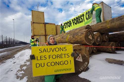 Sauvons foret congo